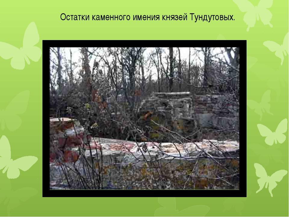 Остатки каменного имения князей Тундутовых.