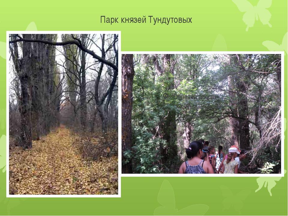 Парк князей Тундутовых