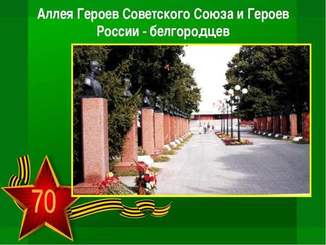 Аллея Героев Советского Союза и Героев России - белгородцев