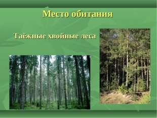 Место обитания Таёжные хвойные леса