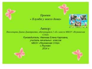Проект « Клумба у моего дома» Автор: Иноземцева Диана Дмитриевна, обучающаяся