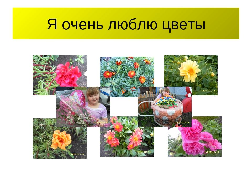 Я очень люблю цветы