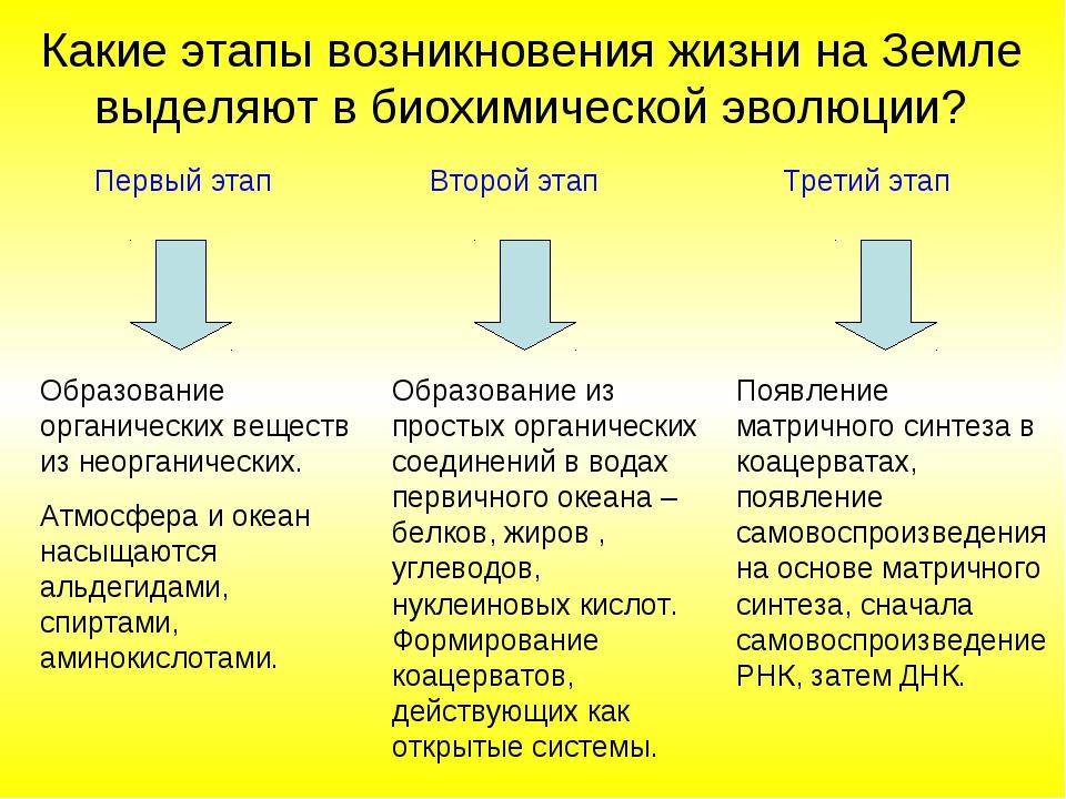 Первый этап Второй этап Третий этап Образование органических веществ из неорг...
