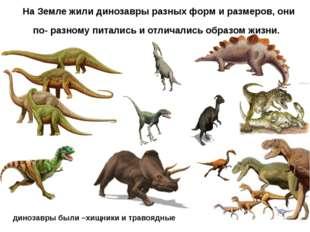 динозавры были –хищники и травоядные На Земле жили динозавры разных форм и ра