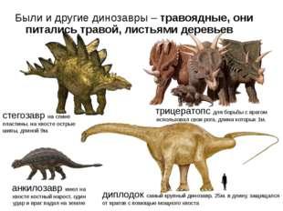 диплодок самый крупный динозавр, 25м. в длину, защищался от врагов с помощью