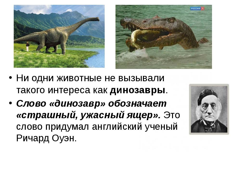 Ни одни животные не вызывали такого интереса как динозавры. Слово «динозавр»...