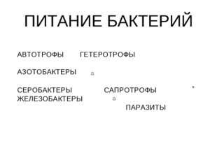 ПИТАНИЕ БАКТЕРИЙ АВТОТРОФЫ ГЕТЕРОТРОФЫ АЗОТОБАКТЕРЫ СЕРОБАКТЕРЫСА
