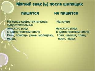 Мягкий знак (ь) после шипящих пишется не пишется На конце существительных На