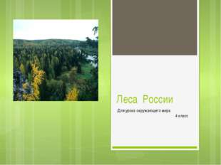 Леса России Для урока окружающего мира 4 класс