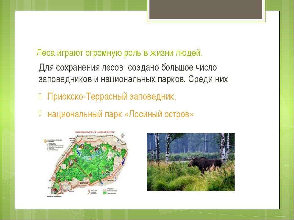 Леса играют огромную роль в жизни людей. Для сохранения лесов создано большое...