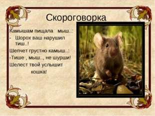 Скороговорка Камышам пищала мыш..: Шорох ваш нарушил тиш..! Шепчет грустно ка