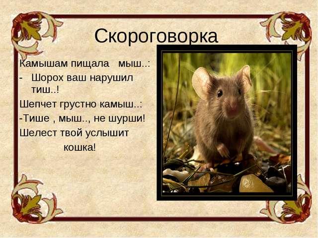 Скороговорка Камышам пищала мыш..: Шорох ваш нарушил тиш..! Шепчет грустно ка...
