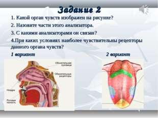 Задание 2 1. Какой орган чувств изображен на рисунке? 2. Назовите части этого
