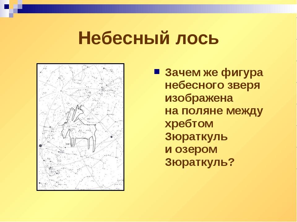 Небесный лось Зачемже фигура небесного зверя изображена наполяне между хреб...