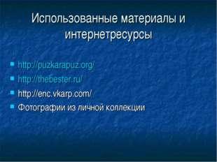 Использованные материалы и интернетресурсы http://puzkarapuz.org/ http://theb
