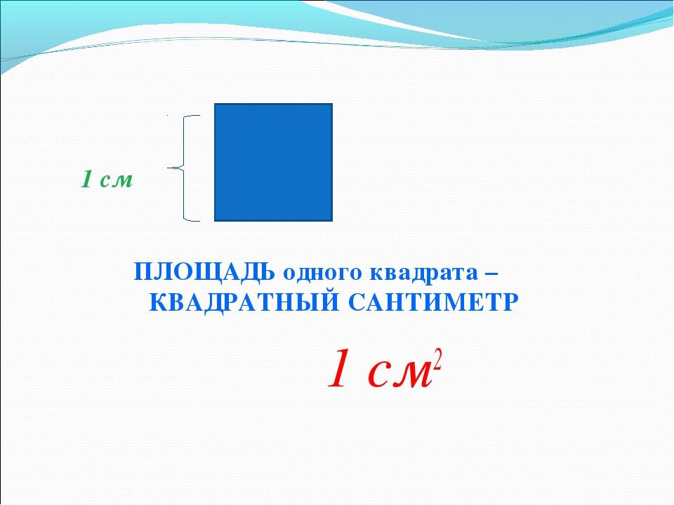 1 см ПЛОЩАДЬ одного квадрата – КВАДРАТНЫЙ САНТИМЕТР 1 см2