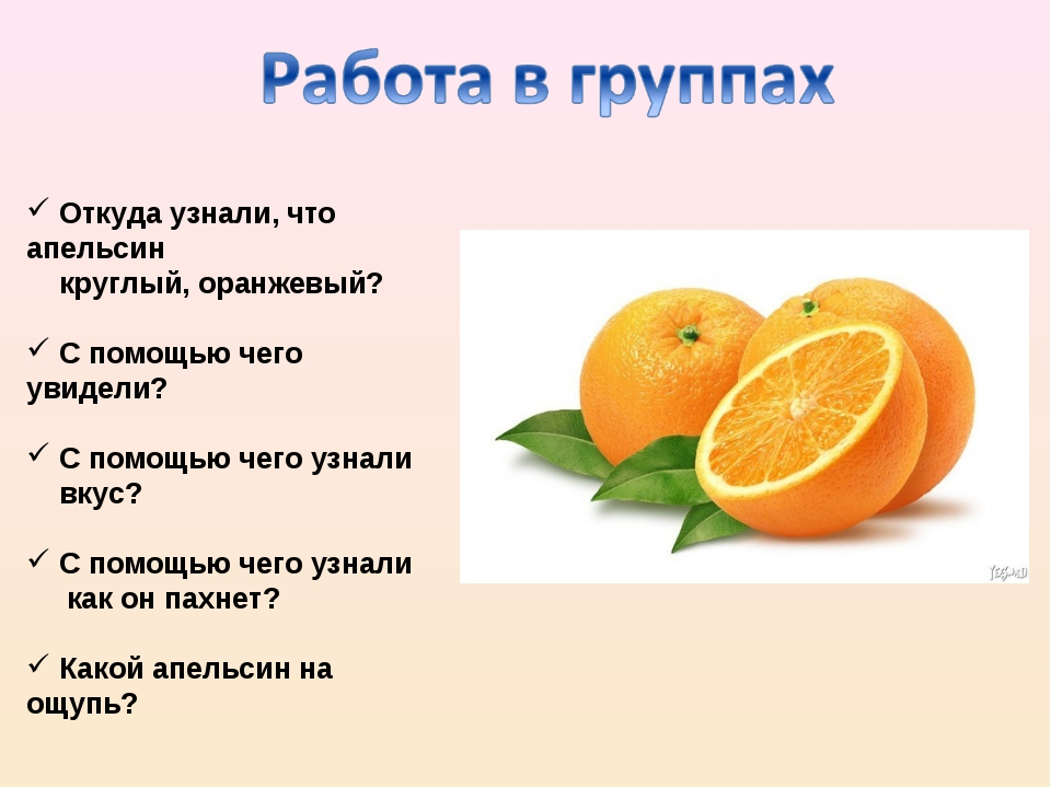 Откуда узнали, что апельсин круглый, оранжевый? С помощью чего увидели? С по...