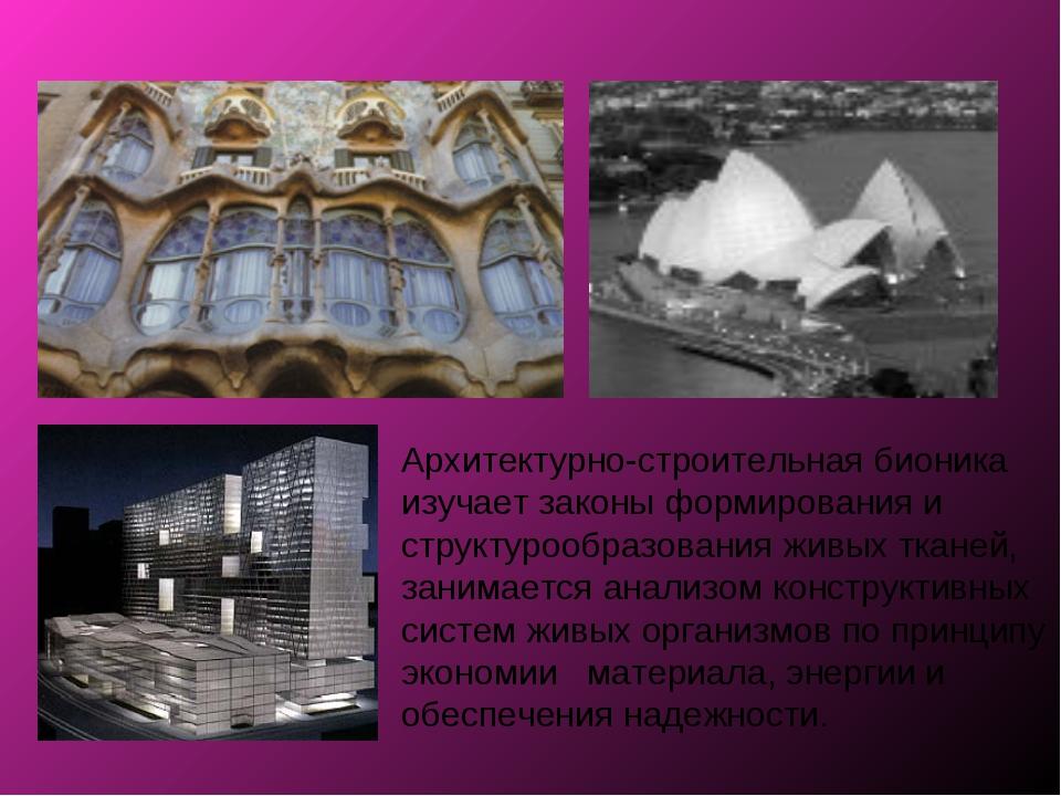 Архитектурно-строительная бионика изучает законы формирования и структурообра...