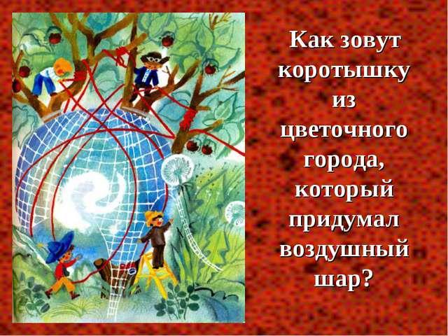 Как зовут коротышку из цветочного города, который придумал воздушный шар?