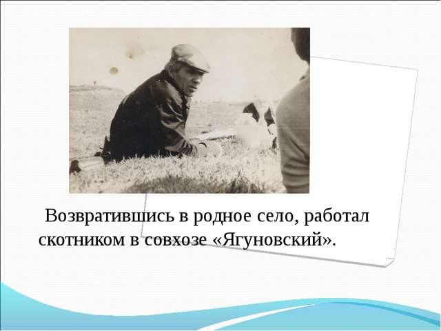 Возвратившись в родное село, работал скотником в совхозе «Ягуновский».