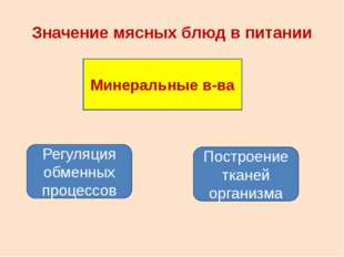 Значение мясных блюд в питании Минеральные в-ва Регуляция обменных процессов