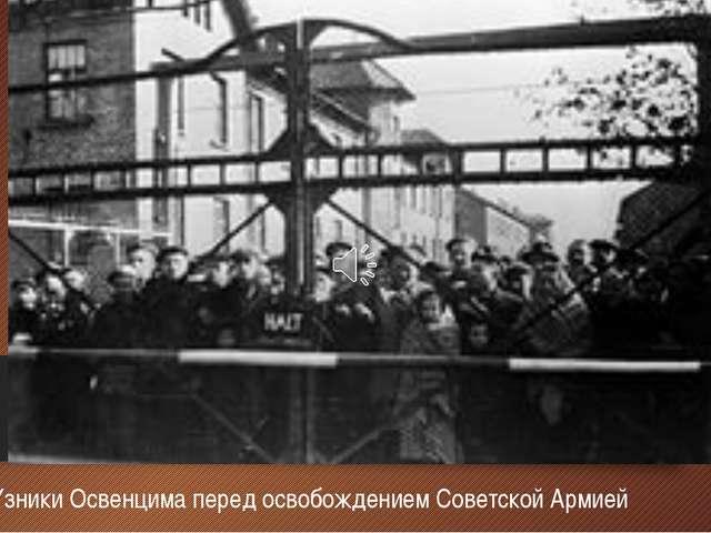 Узники Освенцима перед освобождением Советской Армией