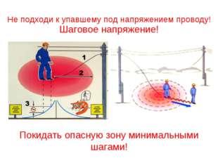 Покидать опасную зону минимальными шагами! Шаговое напряжение! Не подходи к у