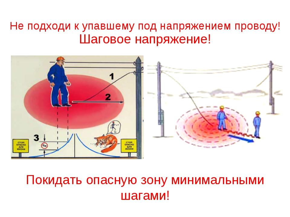 Покидать опасную зону минимальными шагами! Шаговое напряжение! Не подходи к у...