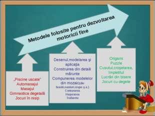 """Metodele folosite pentru dezvoltarea motoricii fine """"Piscine uscate"""" Automas"""