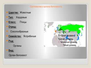 Систематика орлана белохвоста Царство:Животные Тип:Хордовые Класс:Птицы От