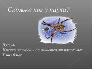Сколько ног у паука? Восемь. Именно этим он и отличается от насекомых. У них