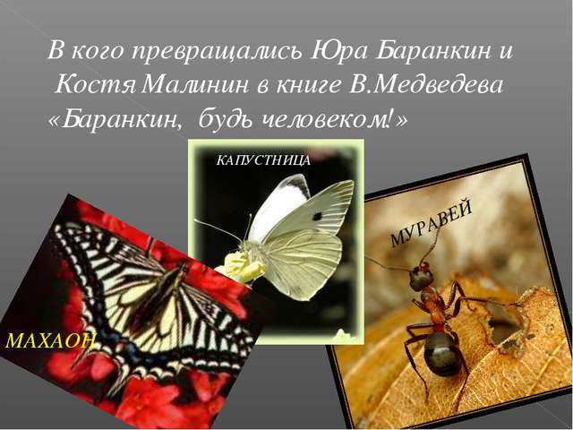 В кого превращались Юра Баранкин и Костя Малинин в книге В.Медведева «Баранки...