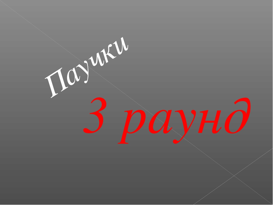 3 раунд Паучки