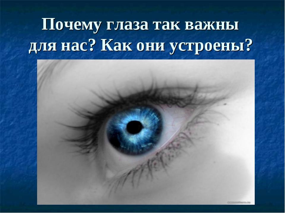 Почему глаза так важны для нас? Как они устроены?