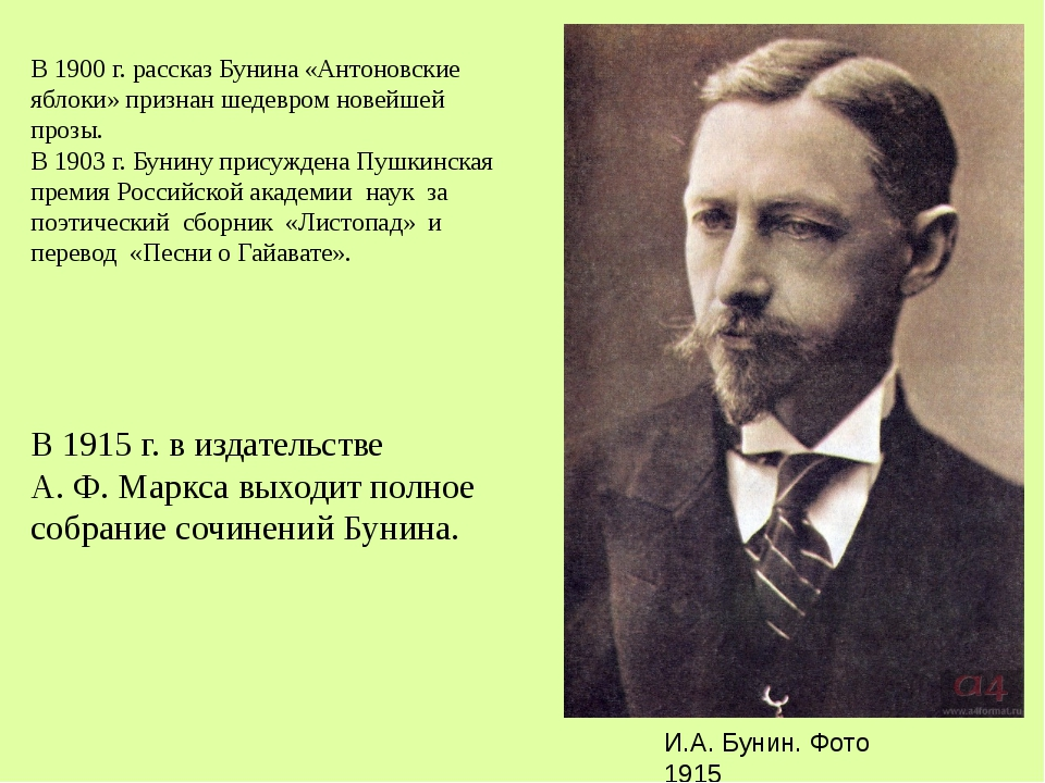 В 1900 г. рассказ Бунина «Антоновские яблоки» признан шедевром новейшей прозы...