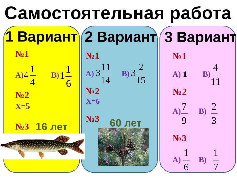 Самостоятельная работа 1 Вариант 2 Вариант №1 А) В) №2 Х=5 №3 16 лет №1 А) В...