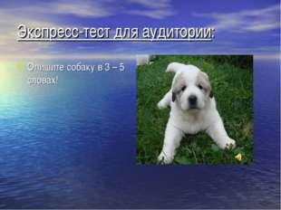 Экспресс-тест для аудитории: Опишите собаку в 3 – 5 словах!