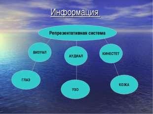 Информация Репрезентативная система ВИЗУАЛ КИНЕСТЕТ АУДИАЛ ГЛАЗ УХО КОЖА