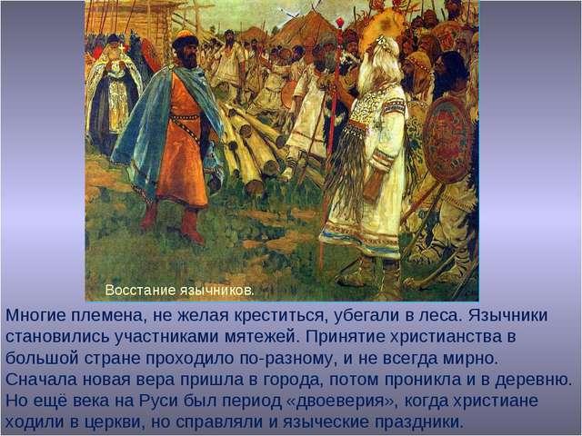 Многие племена, не желая креститься, убегали в леса. Язычники становились уча...