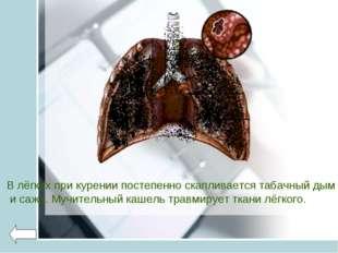 В лёгких при курении постепенно скапливается табачный дым и сажа. Мучительный