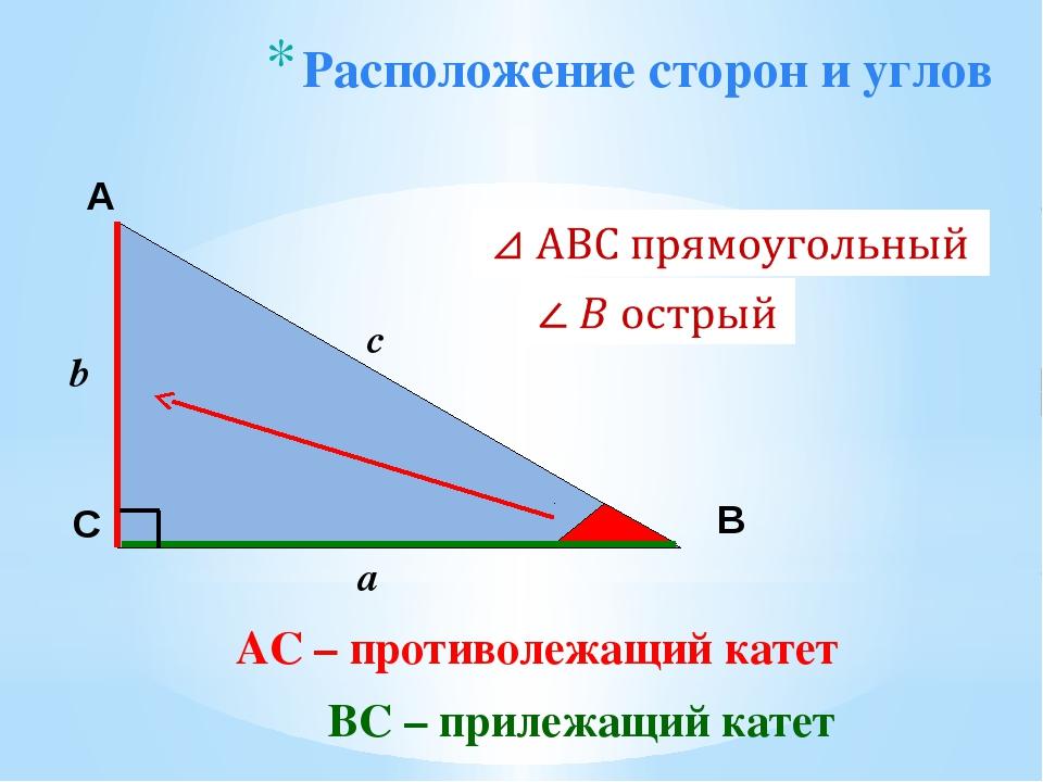 Расположение сторон и углов А С В b c a ВС – прилежащий катет AС – противолеж...