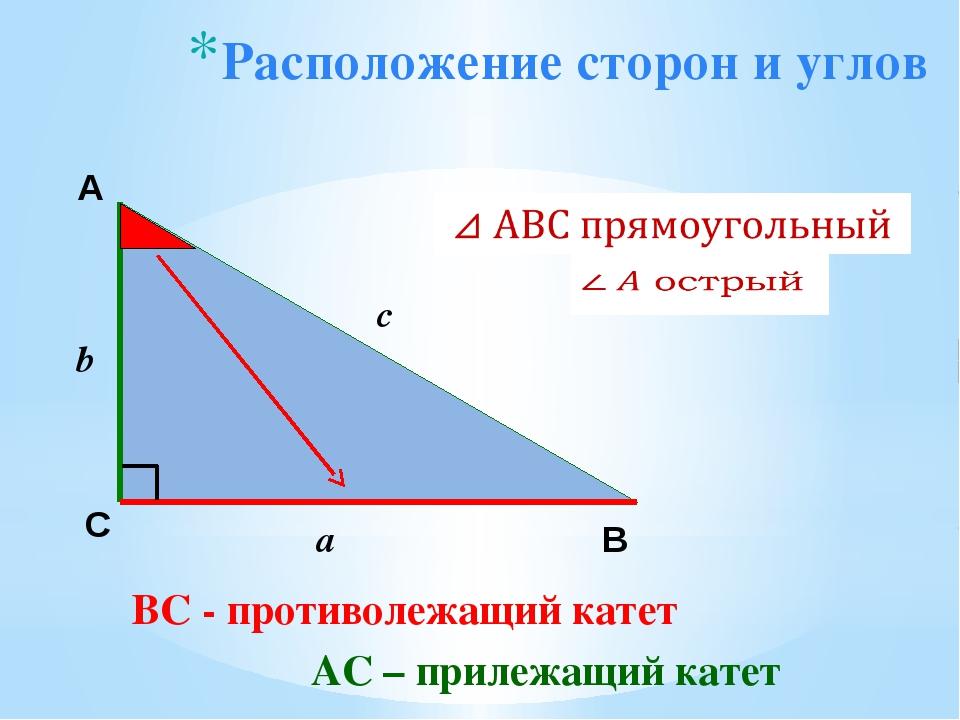 Расположение сторон и углов А С В b c a ВС - противолежащий катет АС – прилеж...