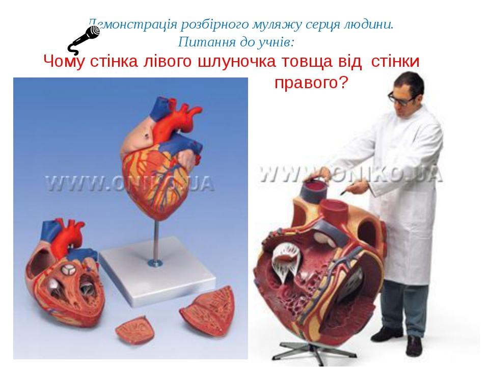 Демонстрація розбірного муляжу серця людини. Питання до учнів: Чому стінка лі...