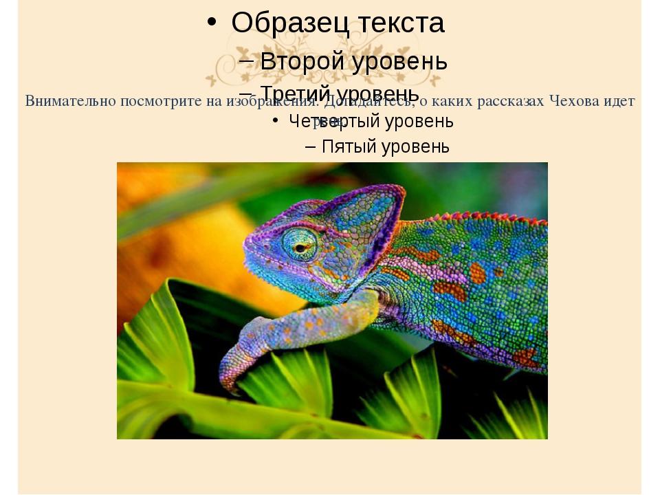 Внимательно посмотрите на изображения. Догадайтесь, о каких рассказах Чехова...