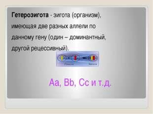 Гетерозигота - зигота (организм), имеющая две разных аллели по данному гену (