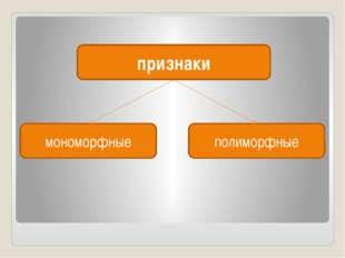 признаки мономорфные полиморфные