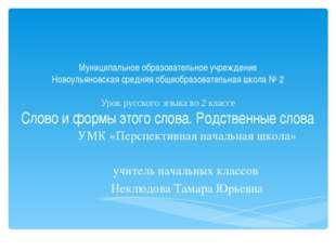 Муниципальное образовательное учреждение Новоульяновская средняя общеобразова