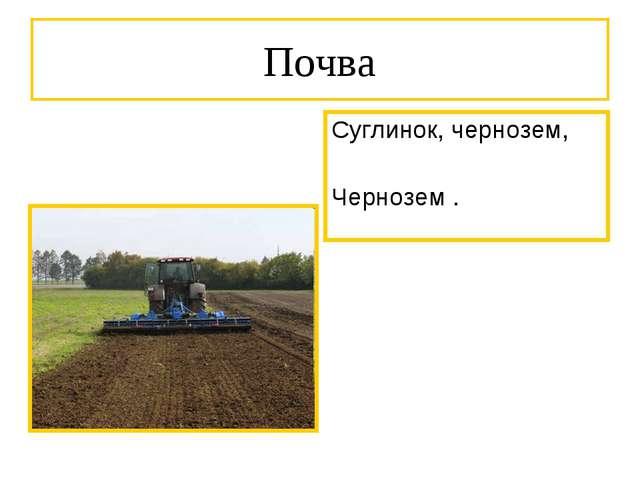 Почва Суглинок, чернозем, Чернозем .