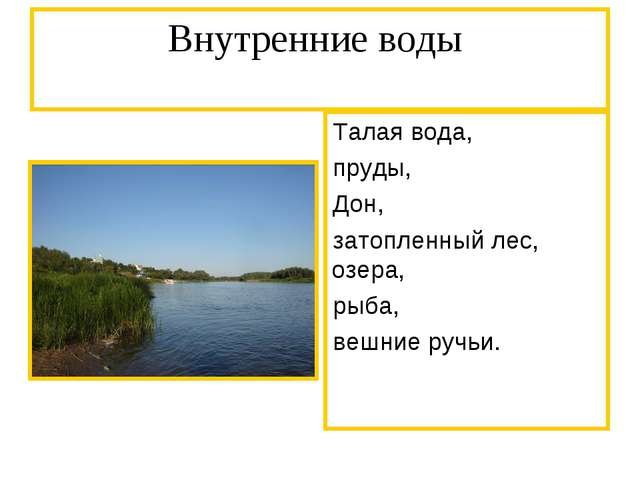 Внутренние воды Талая вода, пруды, Дон, затопленный лес, озера, рыба, вешние...