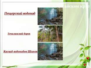 Точилинский борок Пещерский водопад Экологический туризм в Алтайском крае Ка